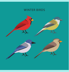 Assortment winter birds flat design vector