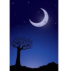 Silhouette tree at nighttime vector image vector image