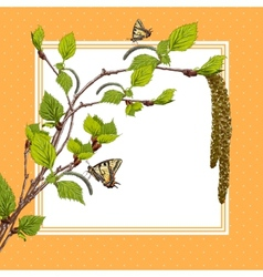 Background with birch branches and butterflies vector