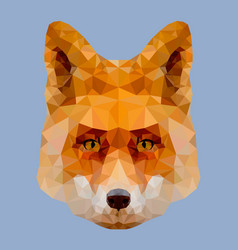 low poly fox head vector image