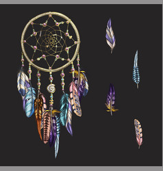 luxury ornate dreamcatcher with feathers vector image vector image