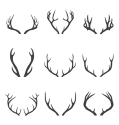 Set of deer horns vector image