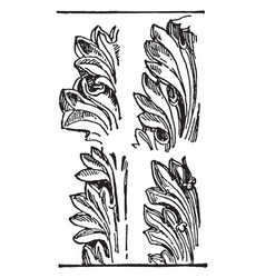 Acanthus leaves an ornament may be carved into vector
