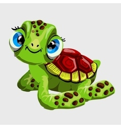 Cute green turtle with large blue eyes vector image