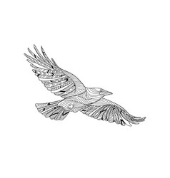 Hand-drawn crow with ethnic pattern coloring page vector