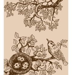 Bird and snail brown vector image