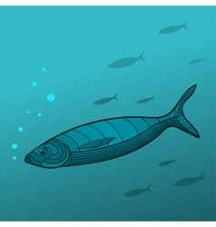 Shoal of fish vector