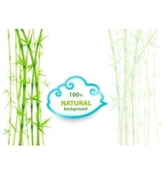 Bamboo asian backdrop vector