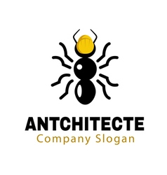 Antchitecte design vector
