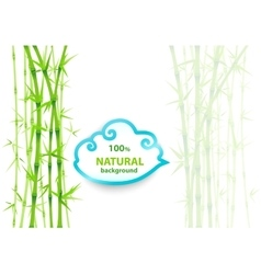 Bamboo asian backdrop vector