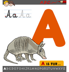 Letter a with cartoon armadillo vector