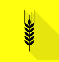 Wheat sign black icon with flat vector