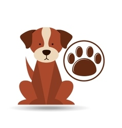 Veterinary dog care paw print icon vector