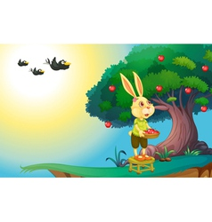 Rabbit in nature vector
