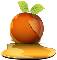 Peaches in caramel vector