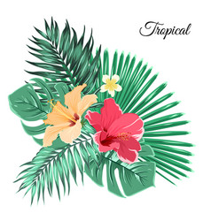 Bouquet composition exotic flowers tropical leaves vector