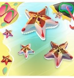 Cartoon seastar on the seashore vector image vector image