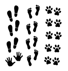 Collection of human and animal trace vector