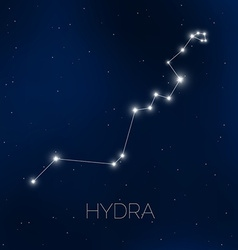 Hydra constellation in night sky vector