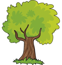 Green tree cartoon vector