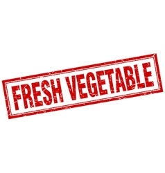 Fresh vegetable red square grunge stamp on white vector