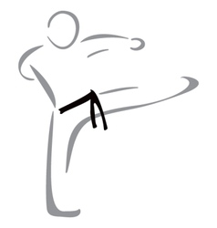 Karate fighter vector image vector image