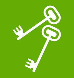 Keys icon green vector