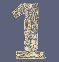 skeleton shaped number one vector image vector image