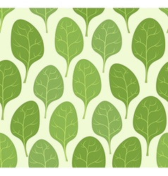 Spinach leaves seamless pattern background veggie vector