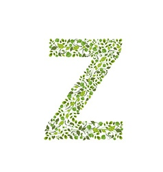 Spring green leaves eco letter Z vector image vector image