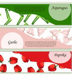 vegetables background banner design vector image