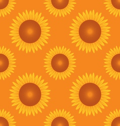 Seamless sun flower pattern orange background vector