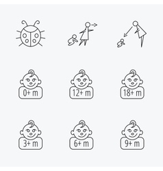 Infant child ladybug and toddler baby icons vector image