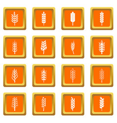 ear corn icons set orange vector image