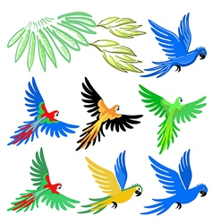 Macaw parrot pattern set vector image