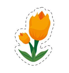 cartoon tulip flower image vector image