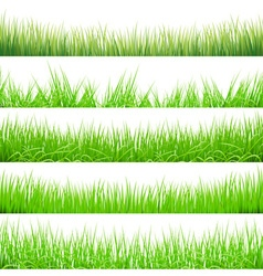 5 backgrounds of green grass isolated on white vector