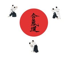 with the aikido image vector image