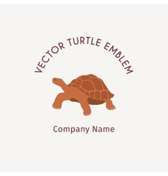 Turtle logo template vector image