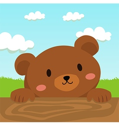 Close up Brown Bear Cartoon in Field vector image vector image