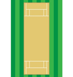 cricket pitch vector image vector image