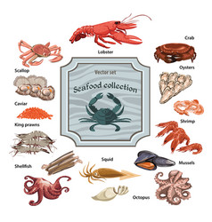 Colorful hand drawn seafood icons set vector