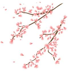 Branch with sakura flowers vector