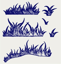 Silhouette grass vector image