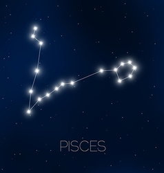 Pisces constellation vector