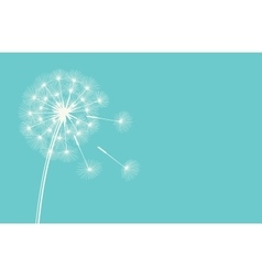Dandelion against the blue sky vector image