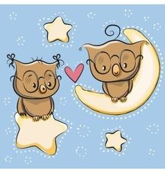 Cute lovers owl vector