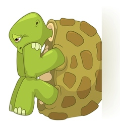 Funny Turtle Confusion vector image vector image