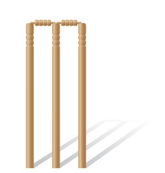 cricket wickets vector image
