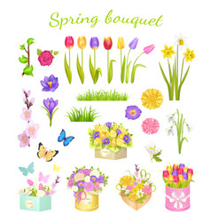 concept of beautiful spring bouquet color flowers vector image